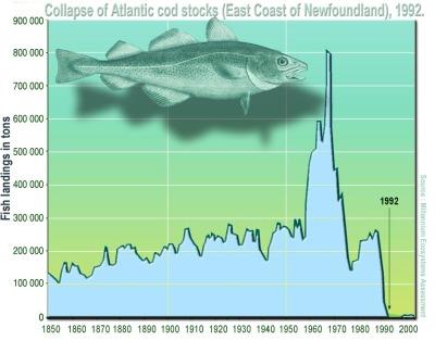 cod graph