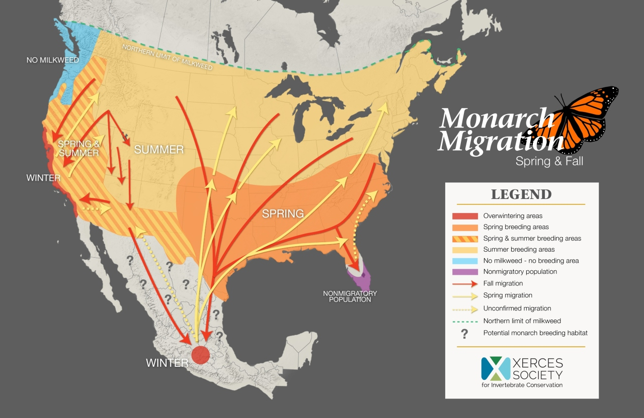 Map showing monarch migration in North America